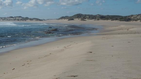 Wir haben unseren Platz beim Ranger im Voraus gebucht und hatten ja keine Ahnung, dass wir diese ganze Bucht für uns haben würden. Schwimmen kann man hier nicht, die Brandung ist zu hefig, aber am Strand gibt es immer etwas zu entdecken, auch Wellen beobachten ist kurzweilig, besonders wenn sie so heftig sind.